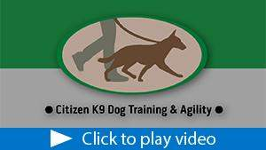 Citizen K9 Dog Training Facility thumbnail.jpg